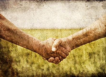 farmers-handshake-in-green-wheat.jpg