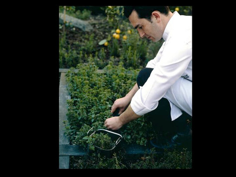 Chef Garden FSH Istanbul ( Chef Erkan )