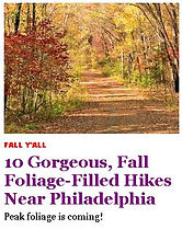 fall hikes in philly.JPG