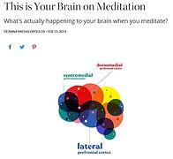 meditation brain.JPG