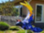 dwslbutterflies4.jpg