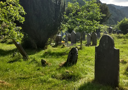 Shady corner of the graves.jpg