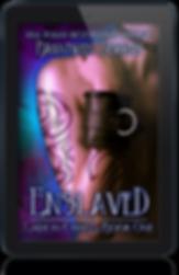 Enslaved, E-book.png