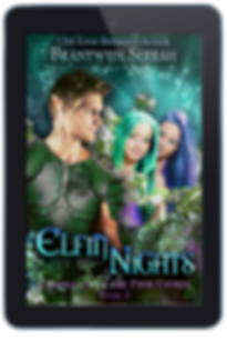 Elfin Nights E-reader.png