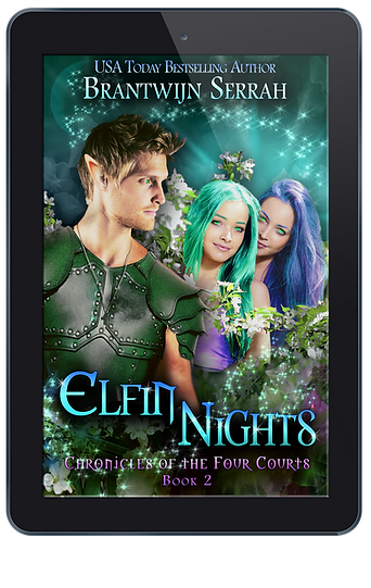 Elfin Nights E-reader.png