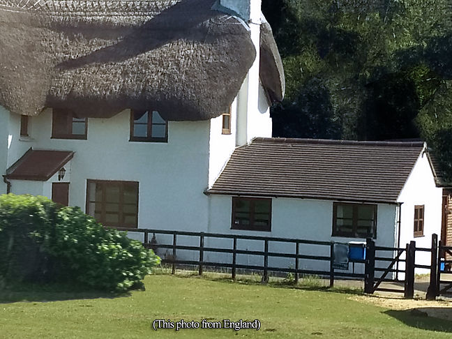 Con's Thatched House.jpg