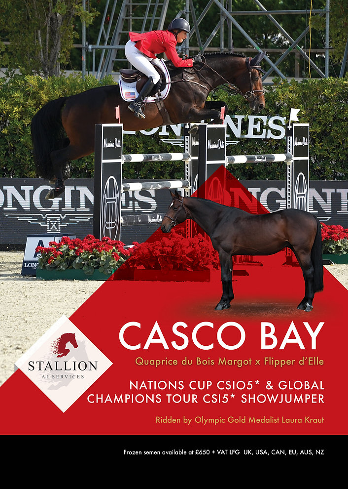 Casco-Bay-Stud-Card-I.jpg