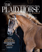 Plaid Horse 2-21 Issue.png