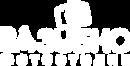 лого (на РУССКОМ) в один цвет (белый).pn
