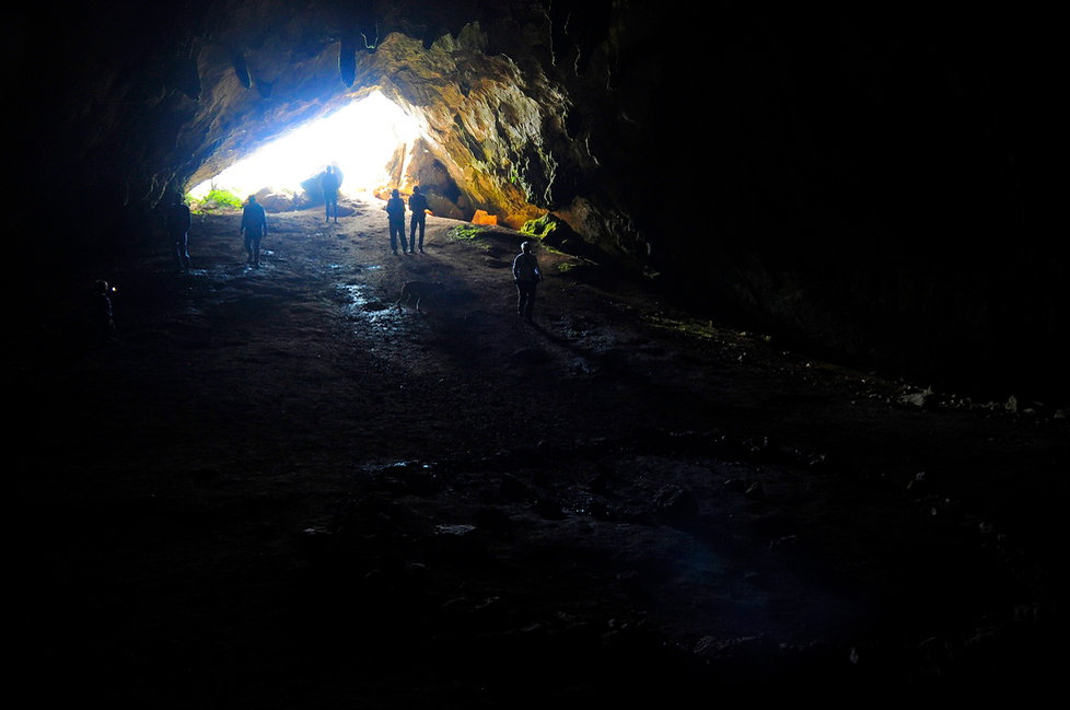Delphi Tour, Korykio Andro