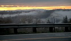fog across the road