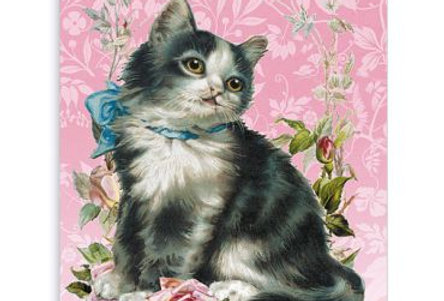 Geburtstagskarte Katzenliebling