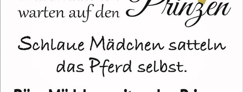 """Kult-Schild """"Brave Mädchen"""""""