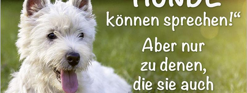 """Kult-Schild """"Hunde können sprechen"""""""