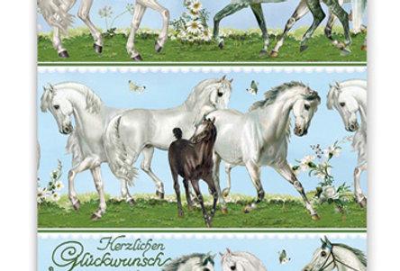 Geburtstagskarte Pferde