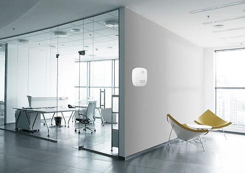 Office3-White-TALES-Feb21-web.jpg