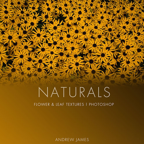 NATURALS - Flower, Plant and Leaf Stock Texture Photos
