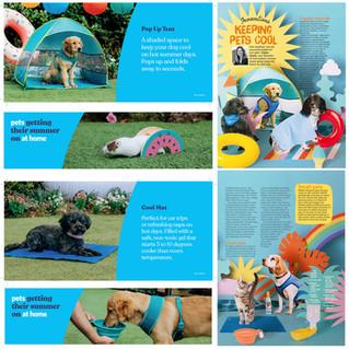 Pets (11 of 12).jpg