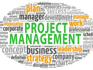 7 Critical Elements of Project Management