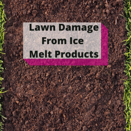 Lawn Damage From Ice Melt Products