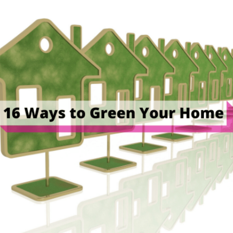 16 Ways to Green Your Home (and keep some greenbacks in your pocket)
