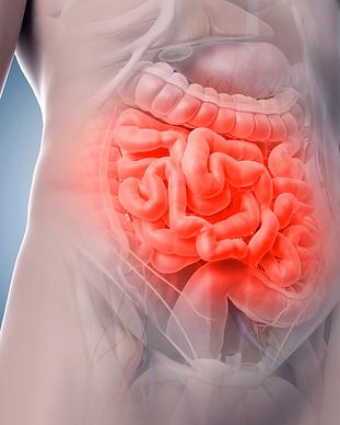 Gastroenterologia Clínica Albano Tomé.pn