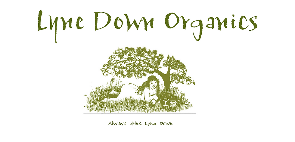 Lyne Down Organics header green .png