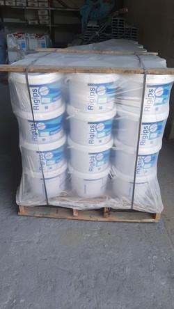 Plaster Primer