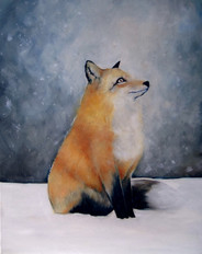 MR_Fox2.jpg
