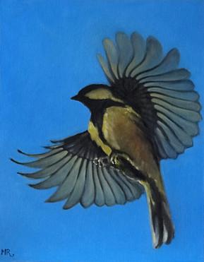 MR_BirdFlight.jpg