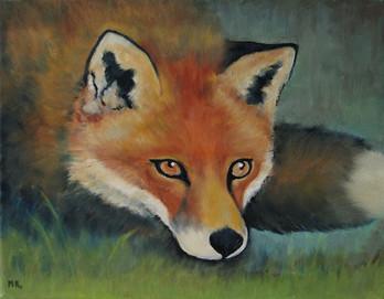 MR_Fox1.jpg