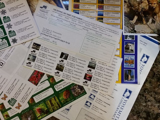 We Should Mail Fundraising Letters? Really?!? E-mail is So Much Cheaper!