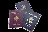 Visa Courier Service