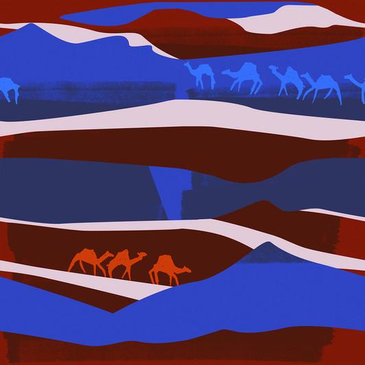 sahara camels.jpg