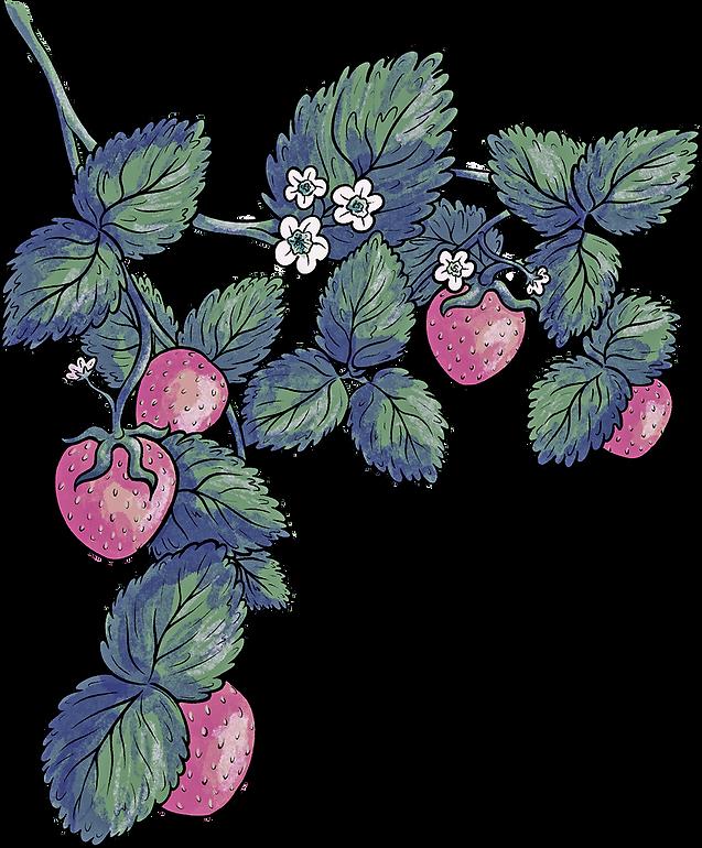 Erdbeeren_klein.png