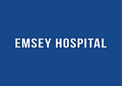 emsey-logo-01.png