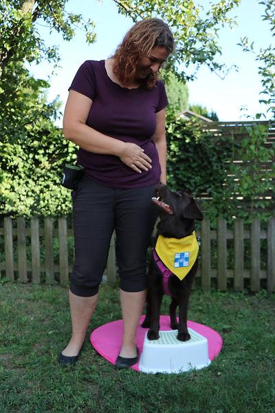 © D.KrischBild: Zoey stehend auf Stockerlmit TBH Kennzeichnung und Ich