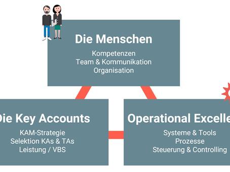 3 Kernelemente des Key Account Managements