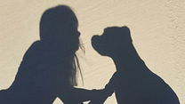 Pet Goodbyes Northern Rivers in home pet euthanasia - me and my dog shadow