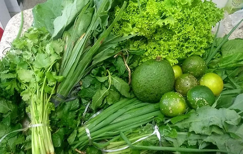 verduras_colhidas.jpeg