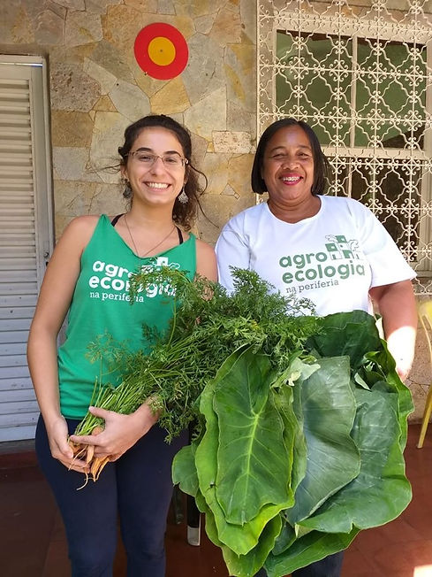 mulheres_agroecologia.jpeg