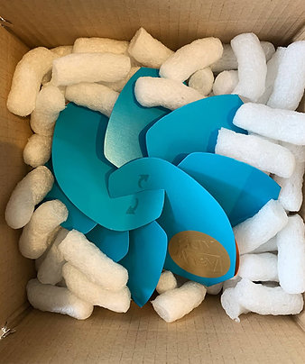 BLUE BOX SELECTION