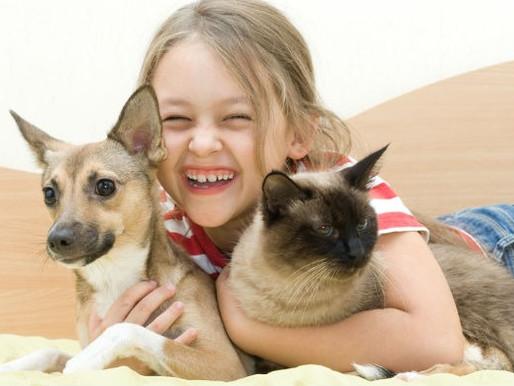 CRMV-PB alerta sobre adoção responsável de animais no Dia das Crianças