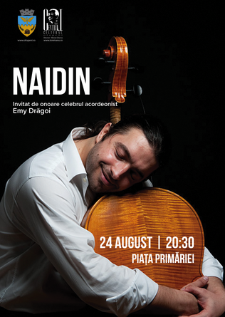 Naidin