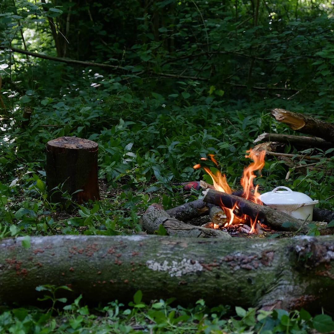 rushmere-woodland.jpg