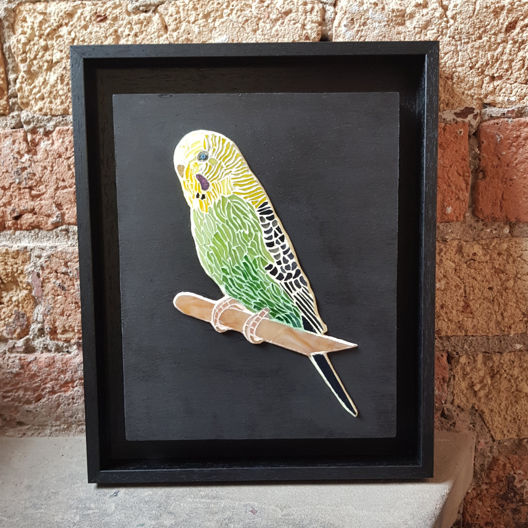 China Petals - Charlie Budgie Pet Portra