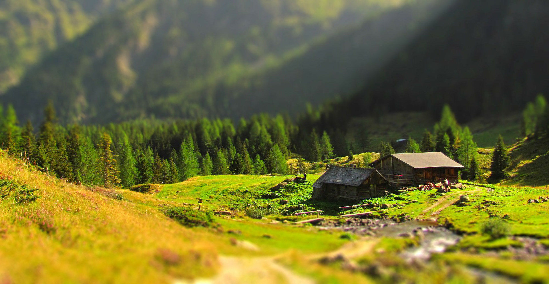 berghütte maiensäss mieten schweiz.jpg