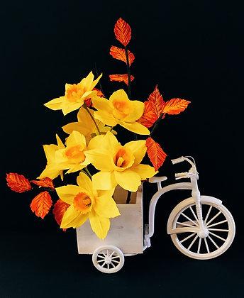 Dazzling Daffodils