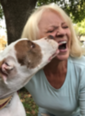 Dog Walker | Mary's Buddies