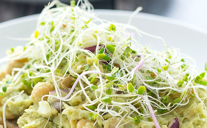 Sprouted Chickpea and Avocado Salad